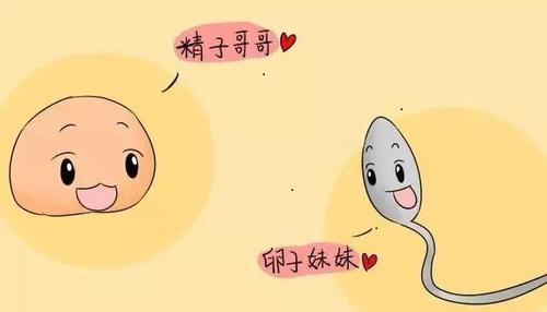 深圳女性卵巢不孕如何预防