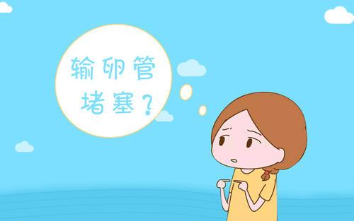 深圳布吉输卵管堵塞的主要原因有哪一些